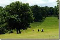 alba-challenge-golf